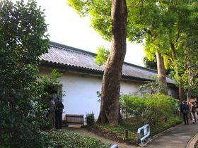 ついに一般公開がはじまった!皇居東御苑の「富士見多聞」を観光しよう|東京都|トラベルjp<たびねす>