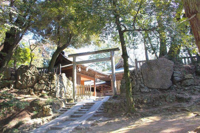 猫好きと城マニアが集まる 栃木県「唐沢山神社」って?