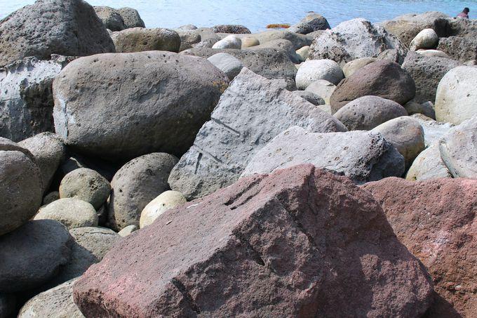 3.稲取の海岸も散策しよう