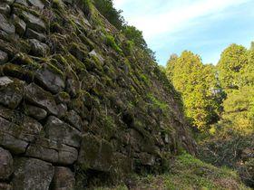 え、1350年前の城?福岡の「大野城」は触れて歩ける国宝級の文化財