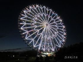 東京「葛西臨海公園」は夜もキレイ!SNS映えするおすすめ鑑賞法|東京都|トラベルjp<たびねす>