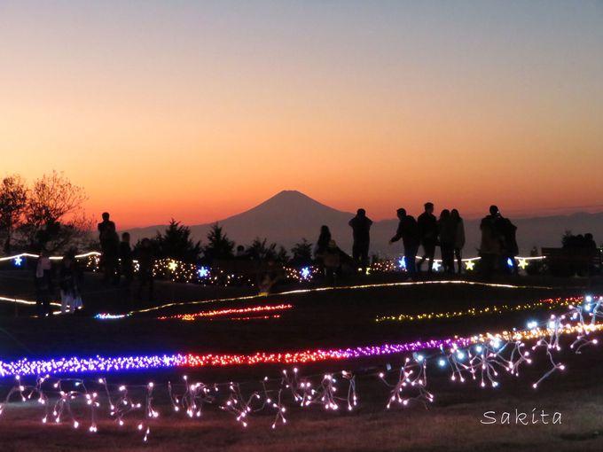 富津市・マザー牧場のイルミは展望抜群!富士見と同時に楽しもう