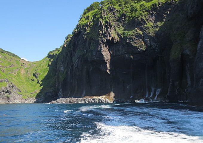 小型船はどこまで寄れるのか?ずばり断崖絶壁の真下まで寄れます!!