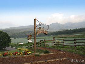 キャベチューの舞台!群馬・つまごいパノラマラインでキャベツ畑に包まれよう|群馬県|トラベルjp<たびねす>