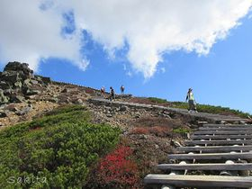 爽快!空へ昇る階段・草津「本白根山」は30分で登れる日本百名山!|群馬県|トラベルjp<たびねす>