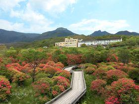 天空の花回廊!那須「八幡つつじ群落」はピンクに萌え上がる|栃木県|トラベルjp<たびねす>