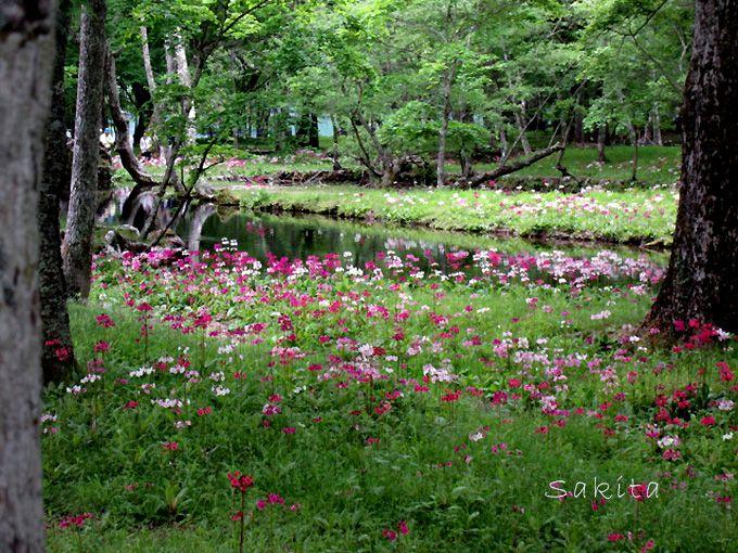 バス停から中禅寺湖畔沿いに徒歩10分・仙人庵が特に美しい