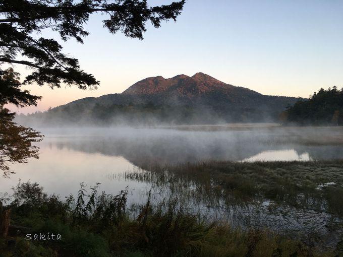 尾瀬ヶ原と尾瀬沼ってどう違う?日帰り可能な範囲と登山口