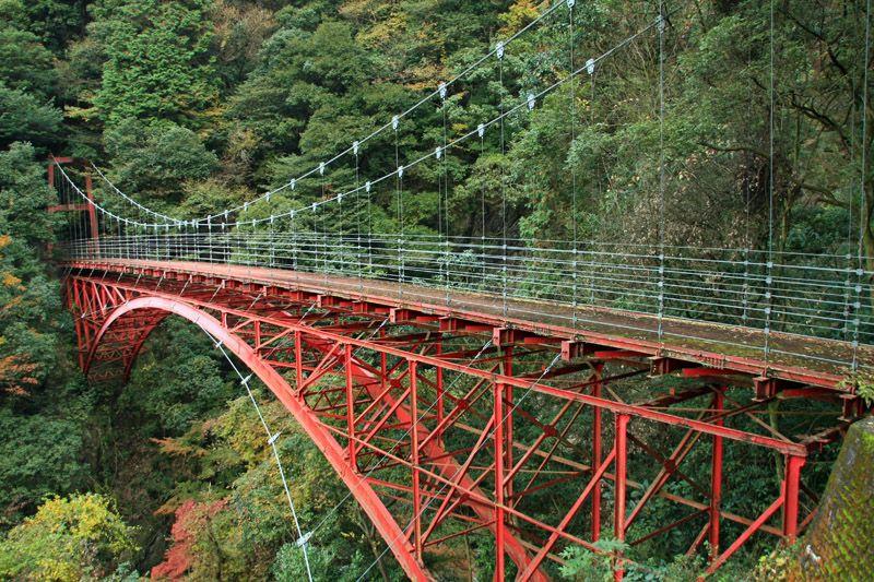 森の中に眠る、明治時代の巨大な鉄橋