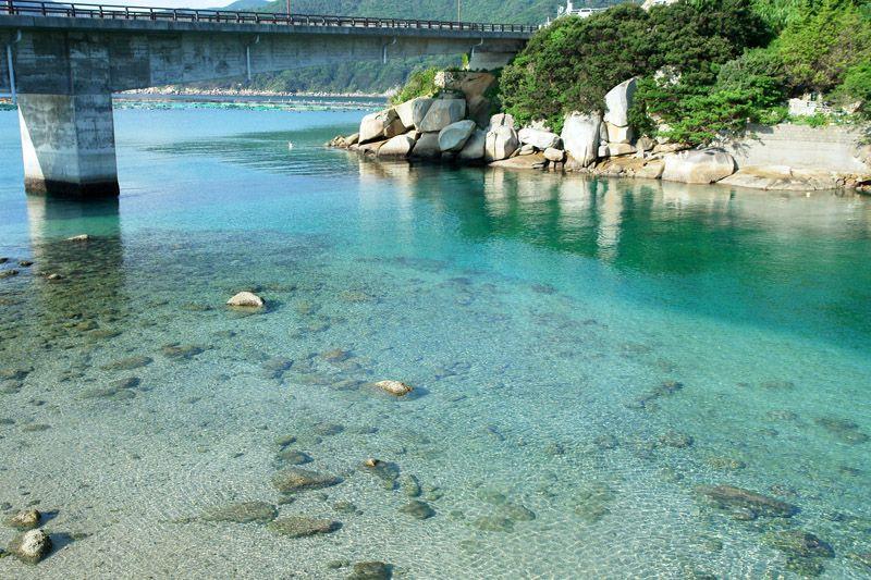 橋の下は海底まで丸見え!透明な柏島の海