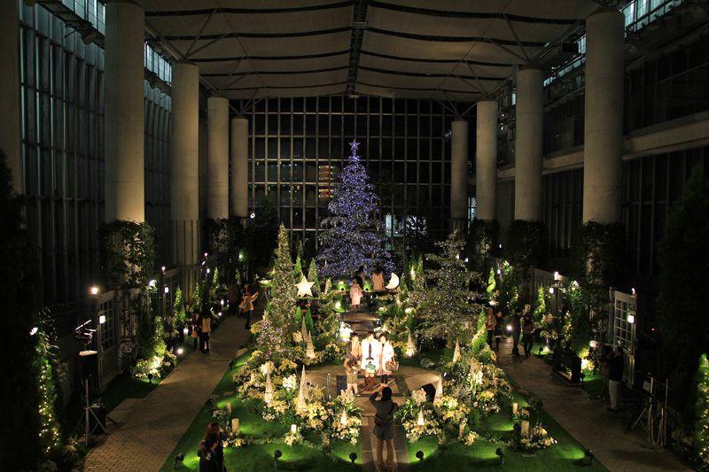 植物館が一面のクリスマスの世界に!淡路島「奇跡の星の植物館」