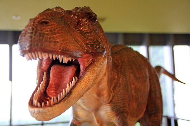 大迫力!まるで生きているかのような恐竜フィギュア