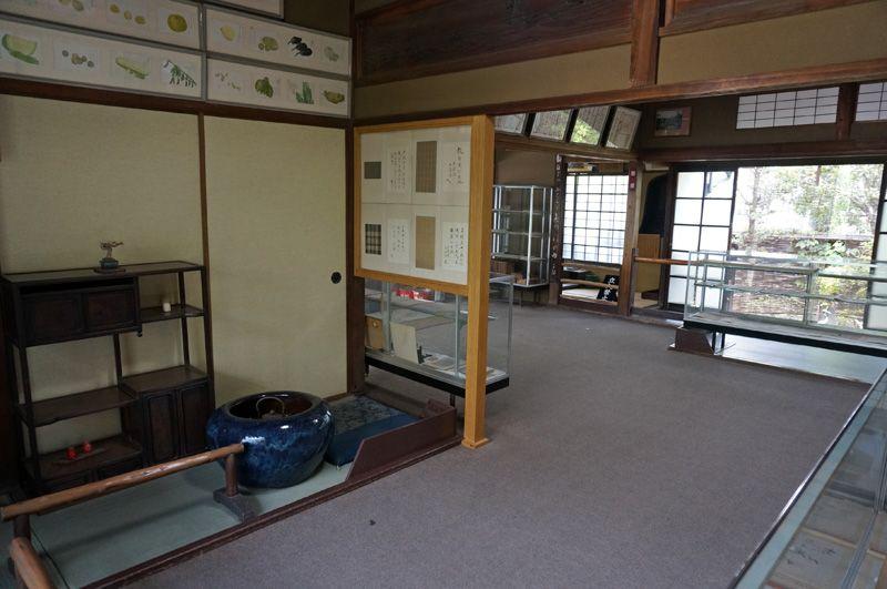 日本家屋の快適さの中で待つ見ごたえのある子規の功績