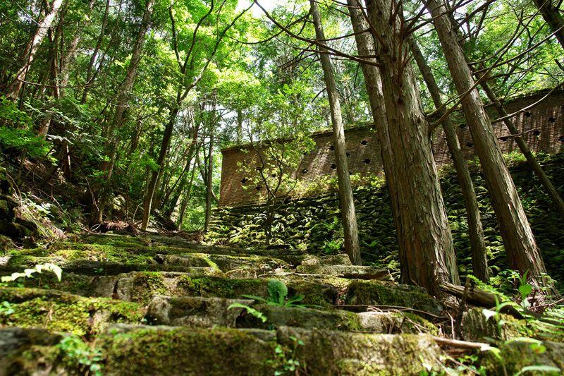 ここに町があった?森の中に眠る小足谷集落跡