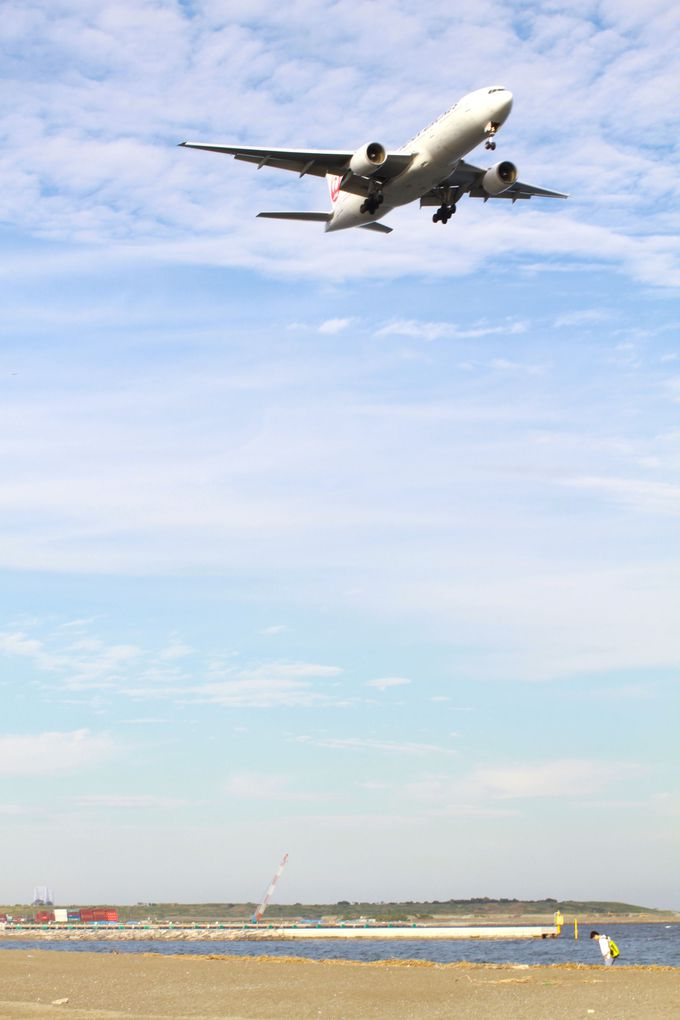 飛行機を見に、公園の南側へ!