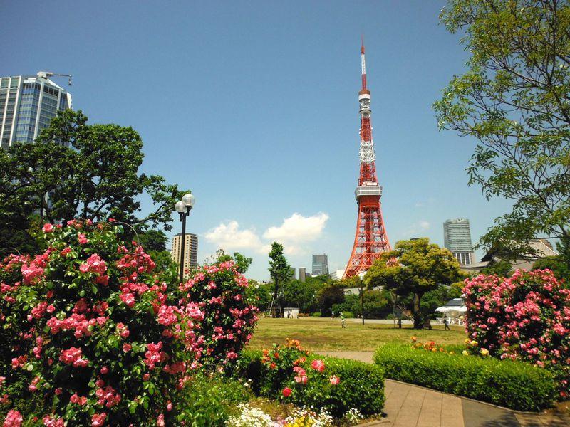 東京観光はコレ! 専門家おすすめ 外国人にも人気なスポット30選