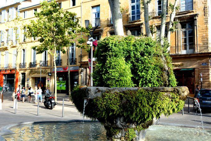 「苔むした噴水」なんと冬には温水も出る生命の泉!?