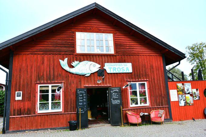 フォトジェニックなジェラート店は水辺のランドマーク的存在