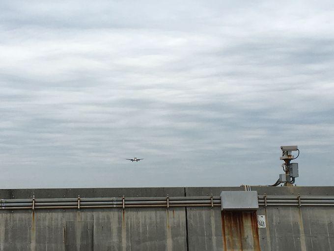 珍しい光景と大迫力の飛行機に圧巻!
