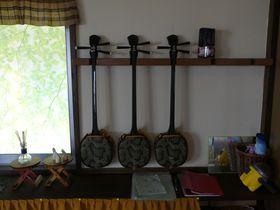 沖縄伝統の三線体験ができる「さんしん村」は宮古島のキビ畑に囲まれた一戸貸しの宿|沖縄県|トラベルjp<たびねす>
