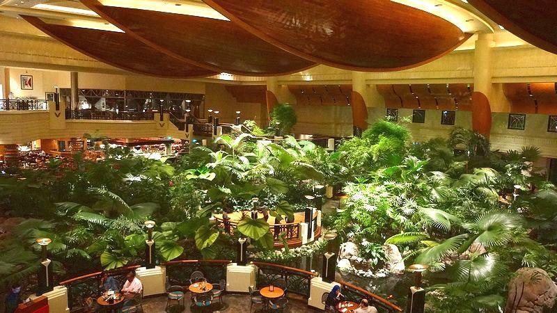 ホテルの中にジャングルが!