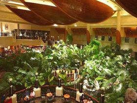 砂漠のホテルにジャングルが出現?グランドハイアットドバイの極上ステイを満喫!