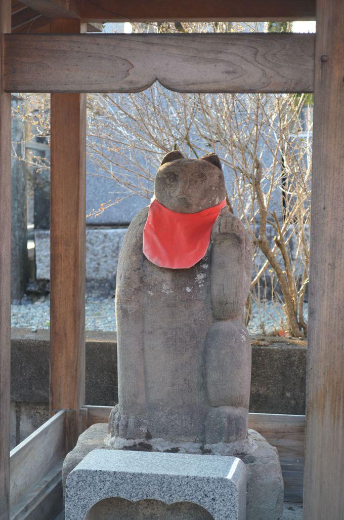 猫地蔵〜常保寺