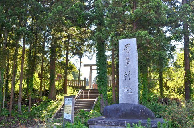ご赦免を願った「居多神社」