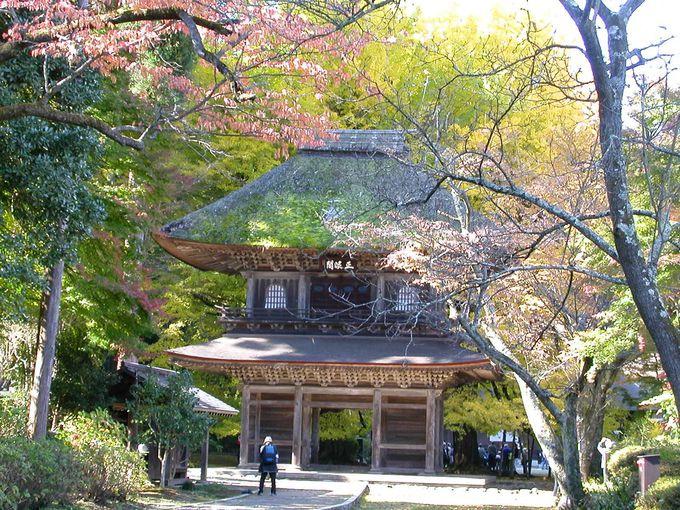 禅宗様の山門
