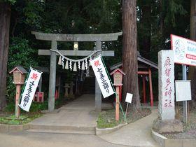 日本武尊も訪れた印旛沼の特別なパワースポット 千葉県「麻賀多神社」|千葉県|トラベルjp<たびねす>