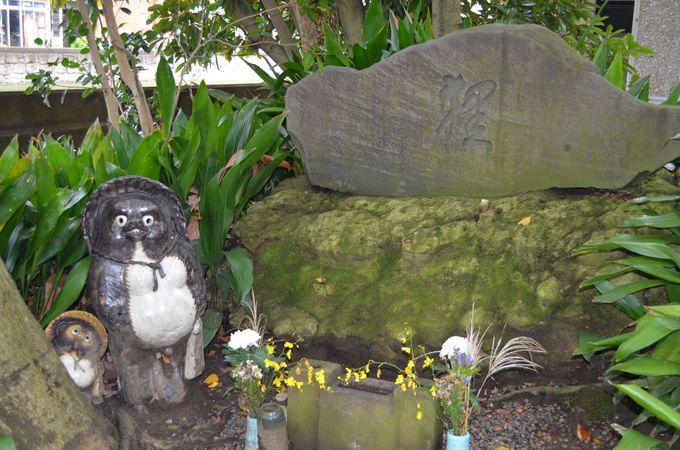 さあ證誠寺の庭へ〜たぬき伝説の地〜