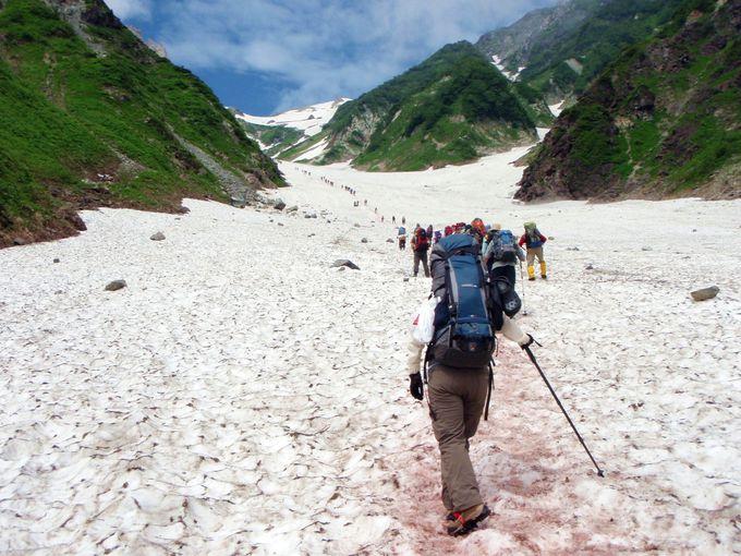 日本最大級の大雪渓に挑む!