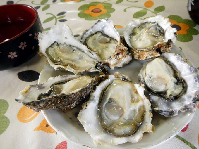 冬の名産「三重の牡蠣」を食べつくそう!