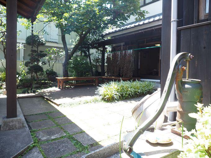 野草茶に使うドクダミが干されるのどかな中庭