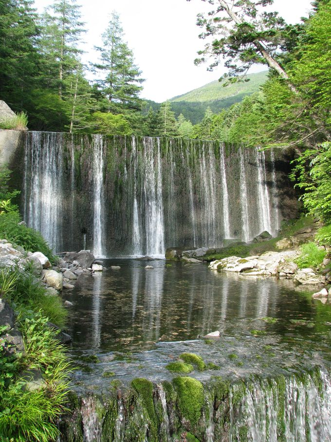 標高1880mの高地。手付かずの大自然に囲まれた秘湯。
