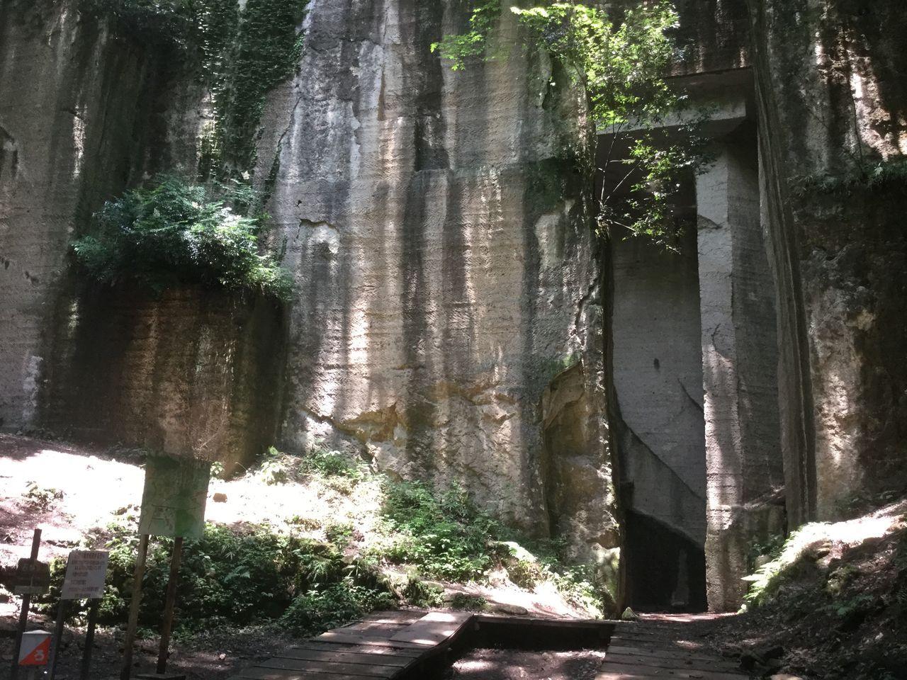 静かな森の中にたたずむ巨大な岩壁!