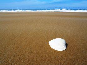 日本のベストビーチにも!「休暇村 能登千里浜」で、知られざる美肌湯とブランドガニを極める!|石川県|トラベルjp<たびねす>