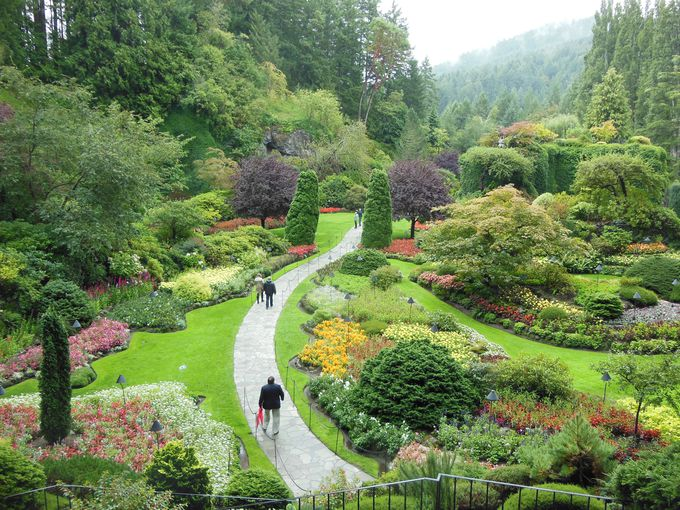 どの季節に訪れても美しい、ブッチャート・ガーデン