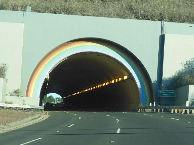 森林浴の前に注目!虹色のトンネル