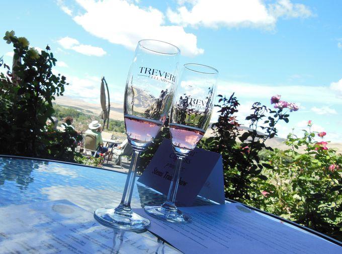 スパークリングワイン5種の味比べ!