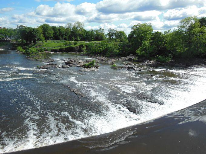 映画「パターソン」の主人公は滝を見ながら詩作する