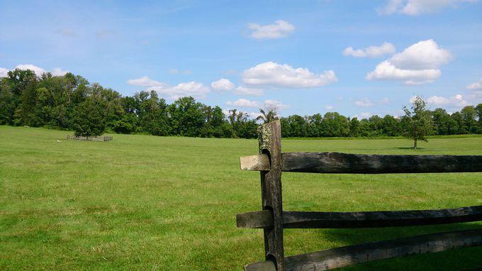 かつてここで独立戦争が!緑いっぱいの古戦場公園