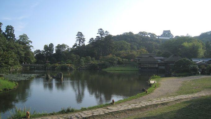 彦根城をのんびり歩いて90分 お茶でいっぷく 優雅な気分に!