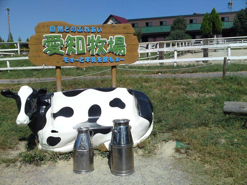 東名高速のPAから直接歩いて行けるレジャースポット!?1日まるまる遊べる観光牧場「愛知牧場」