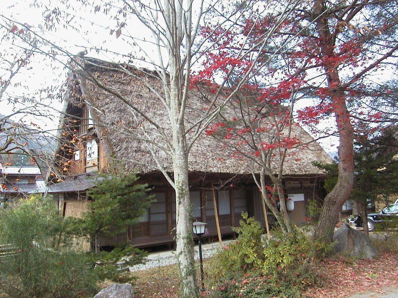 合掌造りの民家・もみじ・柿 晩秋の風景が美しい荻町集落