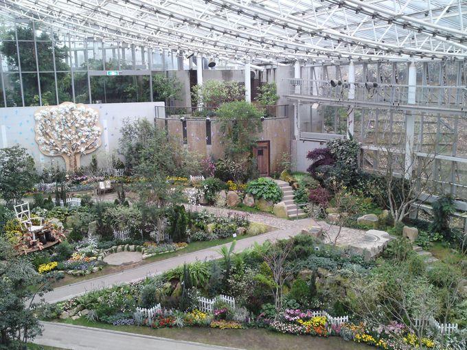 園内中央にある「花の地球館」は、野鳥も飛び交う大温室空間!