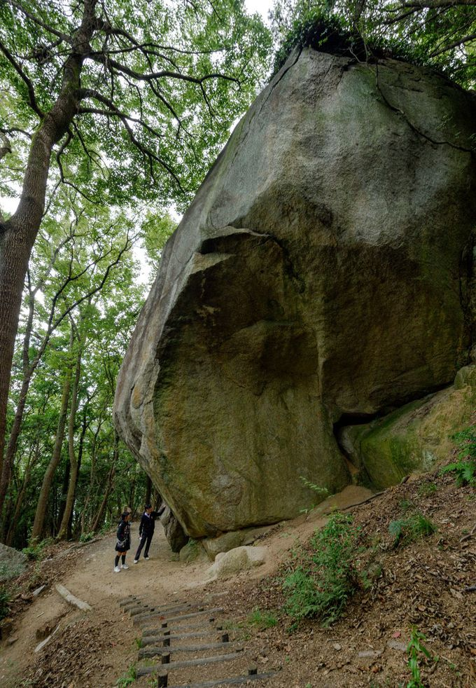 岩谷・天狗岩丁場の巨大天然石「大天狗岩」