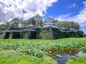島原の歴史を伝える名城「島原城」とその城下町を廻る旅!|長崎県|トラベルjp<たびねす>