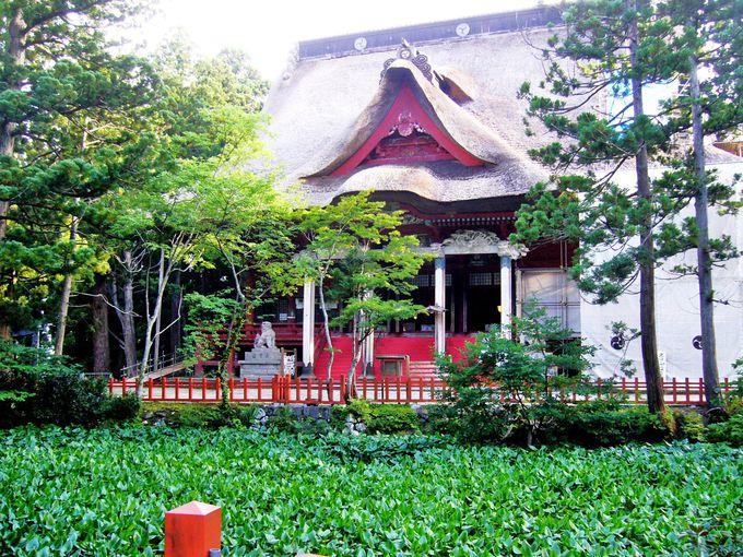 三の坂上り切れば、いよいよ出羽三山神社がある山頂