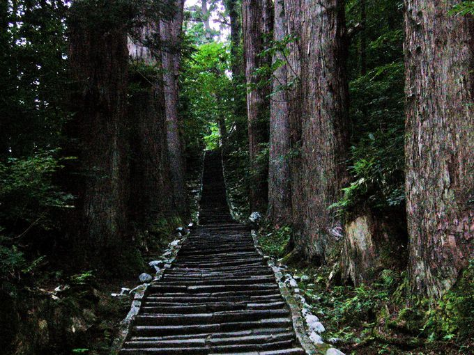 祓川に架かる神橋を渡って俗界から羽黒山の神聖な世界への石段を上る